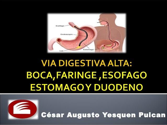Dr. César Augusto Yesquen Puican