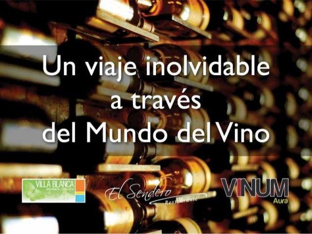 Viaje a través del mundo del Vino en Villa Blanca