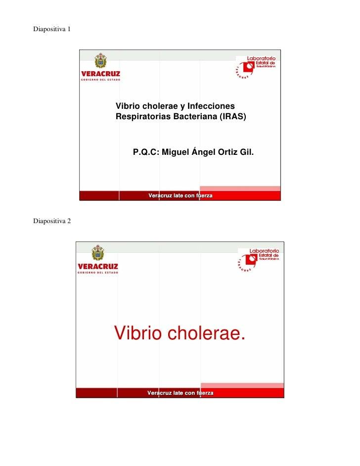 Diapositiva 1                     Vibrio cholerae y Infecciones                 Respiratorias Bacteriana (IRAS)           ...