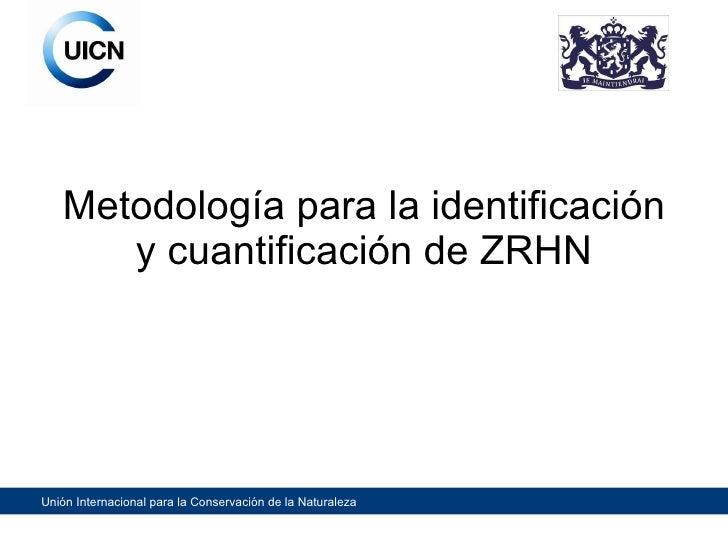 Metodología para la identificación y cuantificación de ZRHN