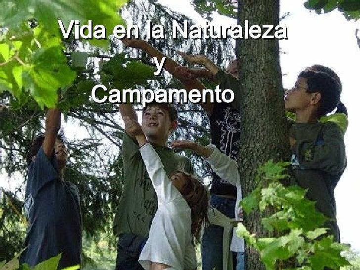 Vida en la Naturaleza y  Campamento     Realizado por Agustina Laplace