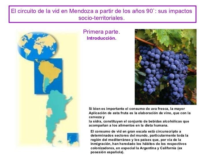 Circuito Vitivinicola : Vid en argentina