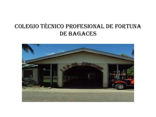 COLEGIO TÉCNICO PROFESIONAL DE FORTUNA DE BAGACES