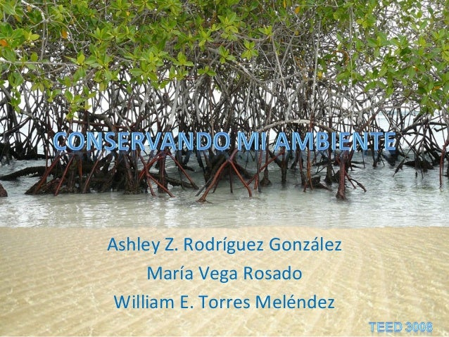Ashley Z. Rodríguez GonzálezMaría Vega RosadoWilliam E. Torres Meléndez