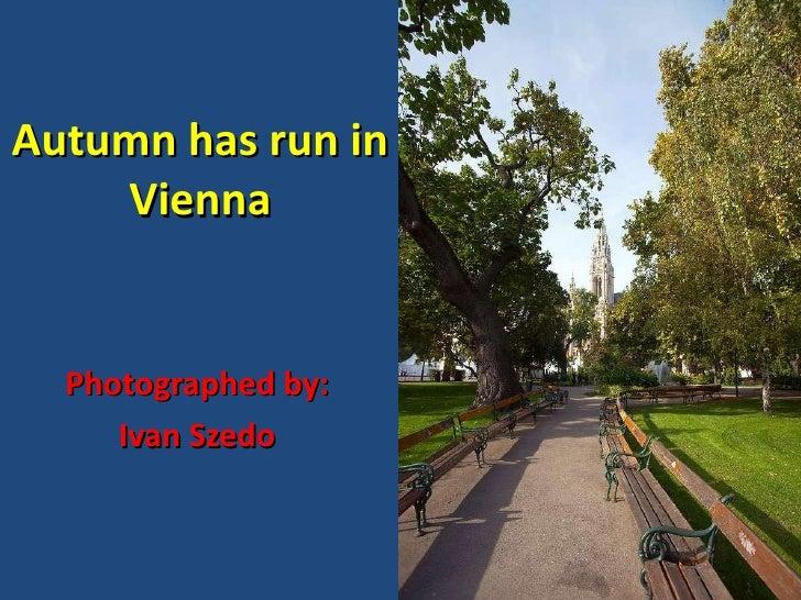 Autumn has run in Vienna Photographed by: Ivan Szedo