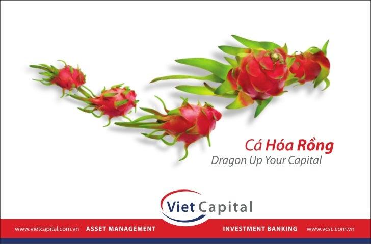 Thiet ke print ad - Vietcapital