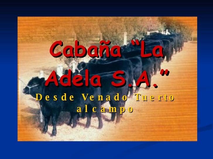 """Cabaña """"La Adela S.A."""" Desde Venado Tuerto al campo"""