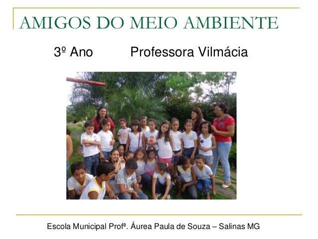 PNAIC - Projeto Amigos do Meio Ambiente - Prof. Vilmácia