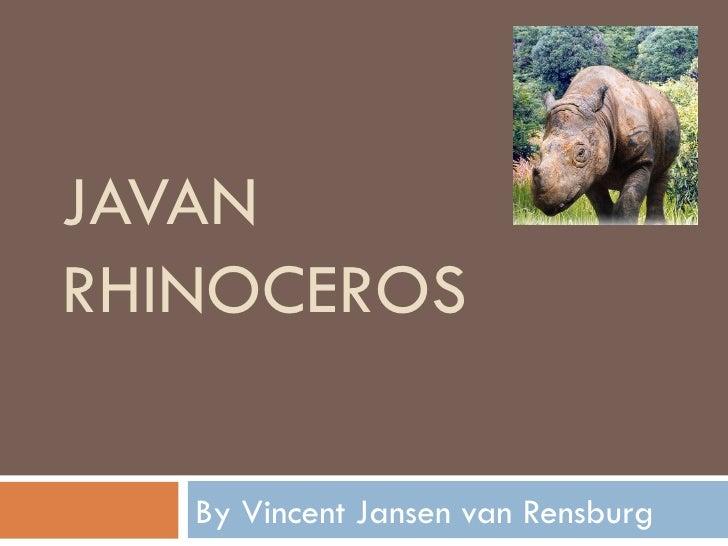 JAVANRHINOCEROS   By Vincent Jansen van Rensburg