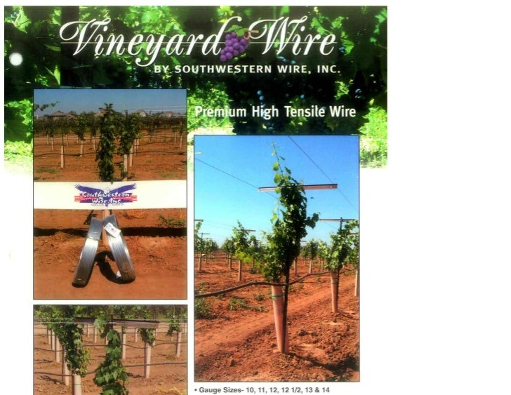 Vineyard Wire Brochure