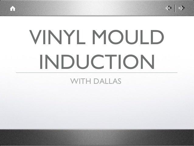 Vinyl mould induction