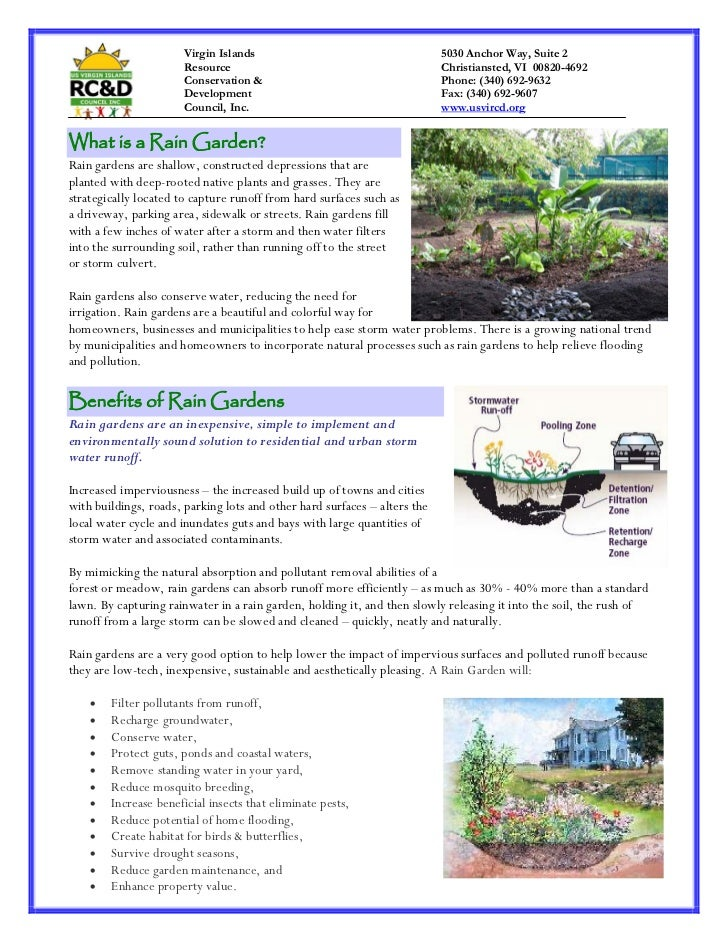 Virgin Islands: Rain Garden Fact Sheet
