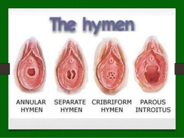 pornerbros defloration vagin