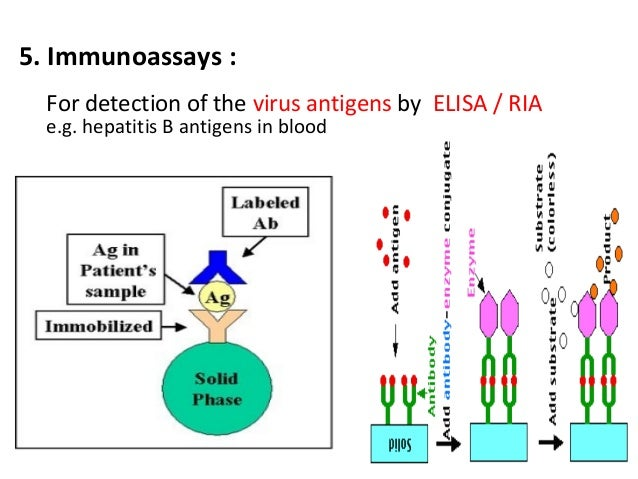 emit elisa ria Hiv antibody assays: hiv insite knowledge base chapter may 2006: niel elisa is the most commonly used type of test to screen for hiv infection because of its.