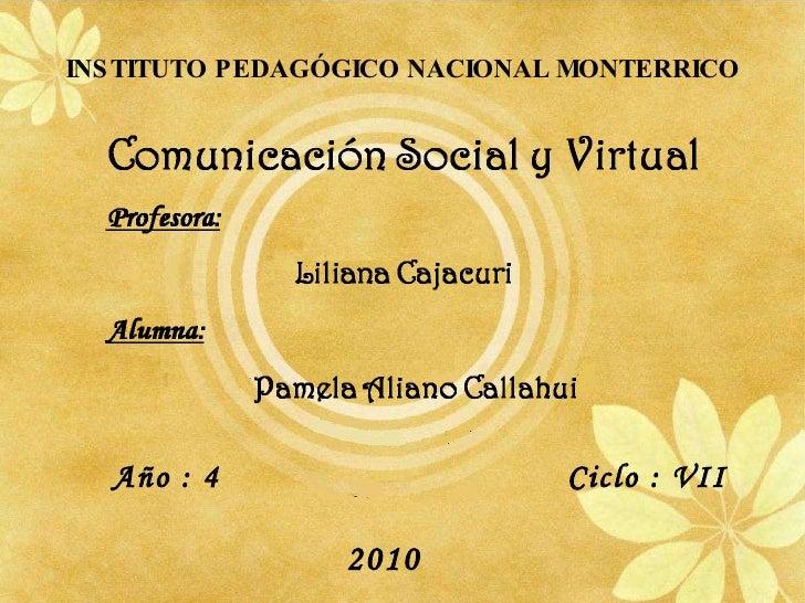 INSTITUTO PEDAGÓGICO NACIONAL MONTERRICO Año : 4   Ciclo : VII 2010