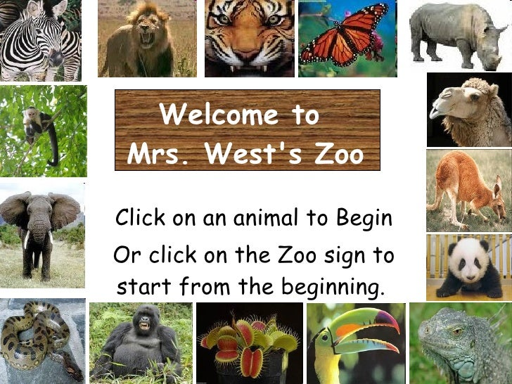 Welcome to  Mrs. West's Zoo Click on an animal to Begin Or click on the Zoo sign to start from the beginning.