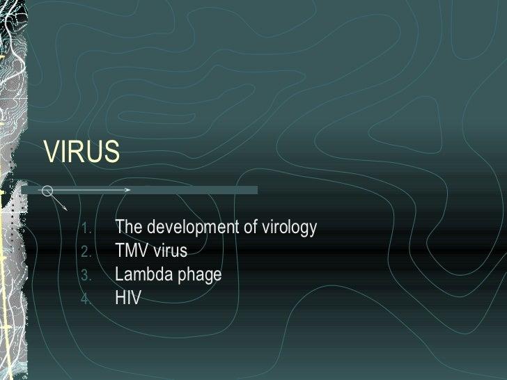 VIRUS <ul><li>The development of virology </li></ul><ul><li>TMV virus </li></ul><ul><li>Lambda phage </li></ul><ul><li>HIV...