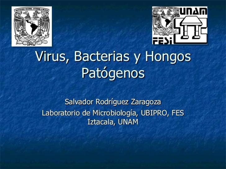 Virus, Bacterias y Hongos Patógenos Salvador Rodríguez Zaragoza Laboratorio de Microbiología, UBIPRO, FES Iztacala, UNAM