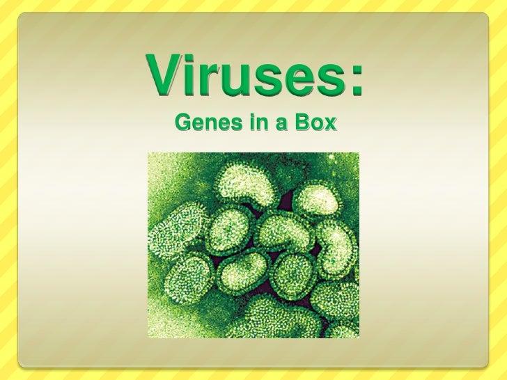 Viruses:Genes in a Box<br />