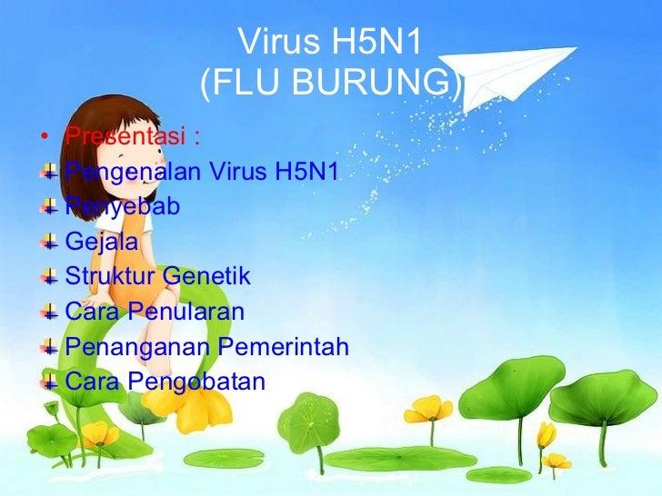 Virus H5N1 (FLU BURUNG) <ul><li>Presentasi : </li></ul><ul><li>Pengenalan Virus H5N1 </li></ul><ul><li>Penyebab  </li></ul...