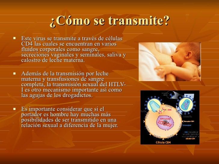 Virus htlv 1 for El sida se contagia por saliva