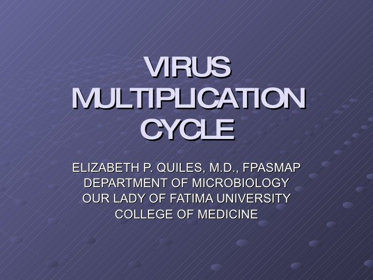VIRUS MULTIPLICATION CYCLE ELIZABETH P. QUILES, M.D., FPASMAP DEPARTMENT OF MICROBIOLOGY OUR LADY OF FATIMA UNIVERSITY COL...