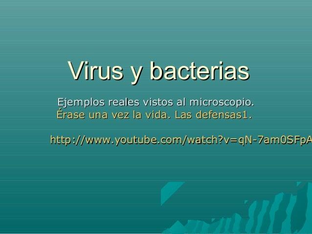 Virus y bacteriasEjemplos reales vistos al microscopio.Érase una vez la vida. Las defensas1.http://www.youtube.com/watch?v...