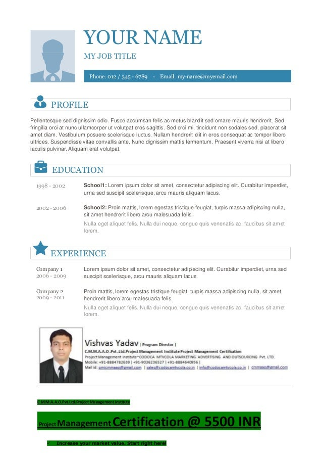 Vishvas resume template-10