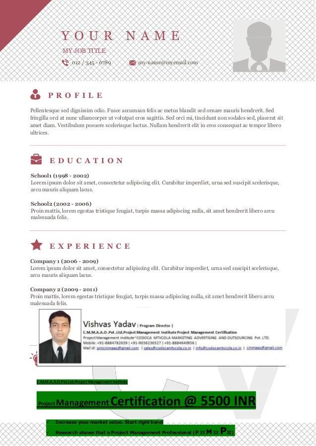 Vishvas resume template-15