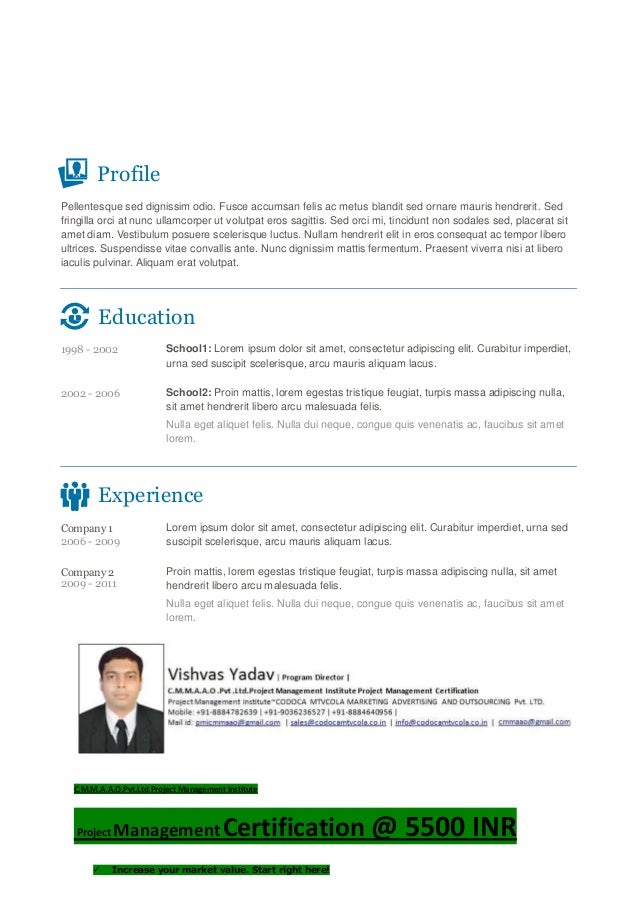 Vishvas resume template-3