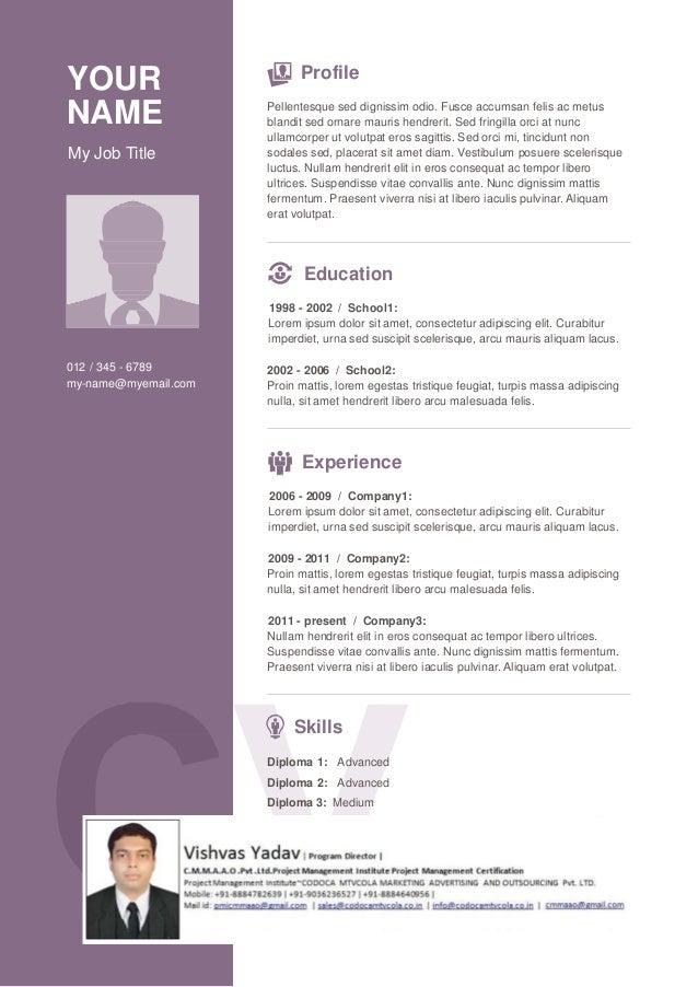 Vishvas resume template-8