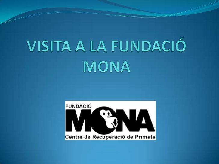 VISITA A LA FUNDACIÓ MONA<br />