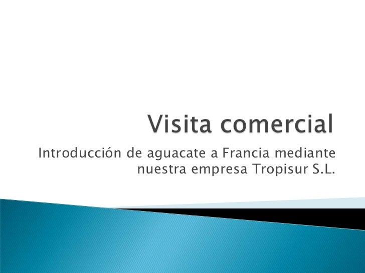 Visita comercial <br />Introducción de aguacate a Francia mediante nuestra empresa Tropisur S.L.<br />
