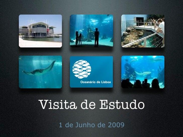 Visita de Estudo    1 de Junho de 2009