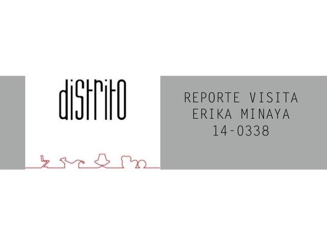 REPORTE VISITA ERIKA MINAYA 14-0338