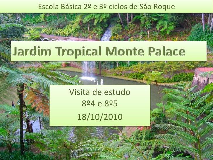 Escola Básica 2º e 3º ciclos de São Roque Jardim Tropical Monte Palace Visita de estudo 8º4 e 8º5 18/10/2010