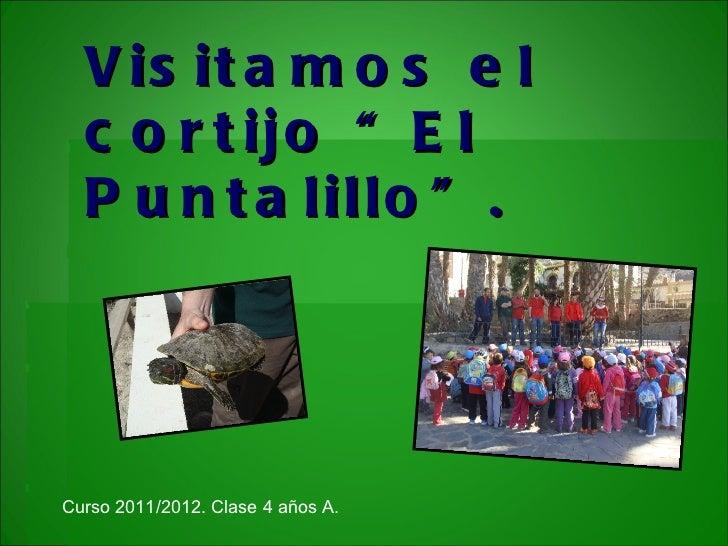 """V is it a m o s e l  c o r t ijo """" E l  P u n t a lillo """" .Curso 2011/2012. Clase 4 años A."""