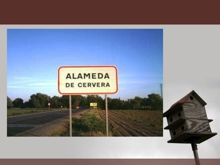 Visita turistica a_alameda_de_cervera