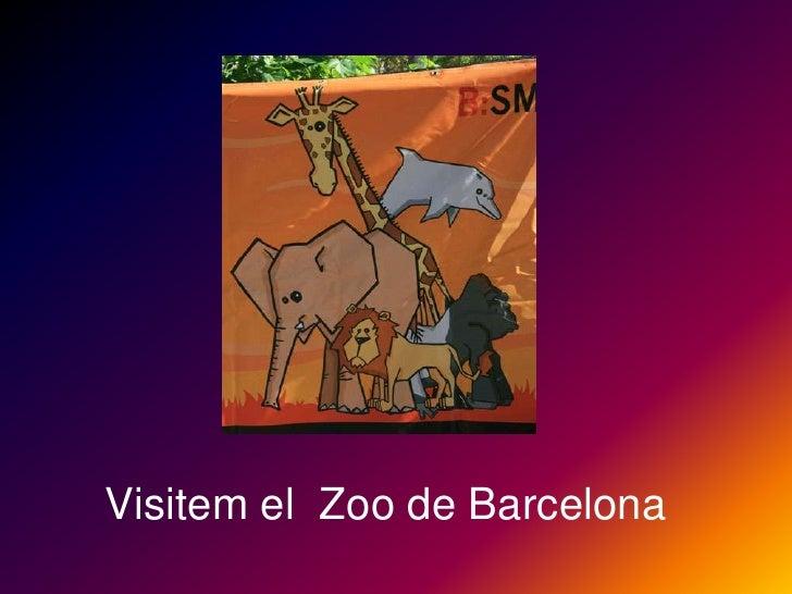 Visitem el Zoo de Barcelona<br />