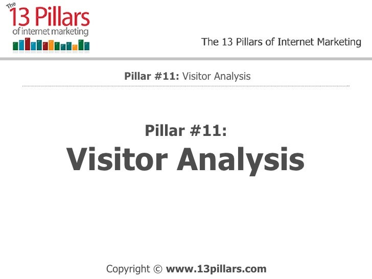 Visitor Analysis - Internet Marketing Pillar #11
