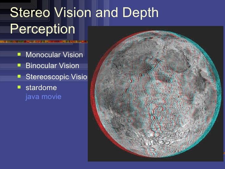 Stereo Vision and DepthPerception    Monocular Vision    Binocular Vision    Stereoscopic Vision    stardome     java ...