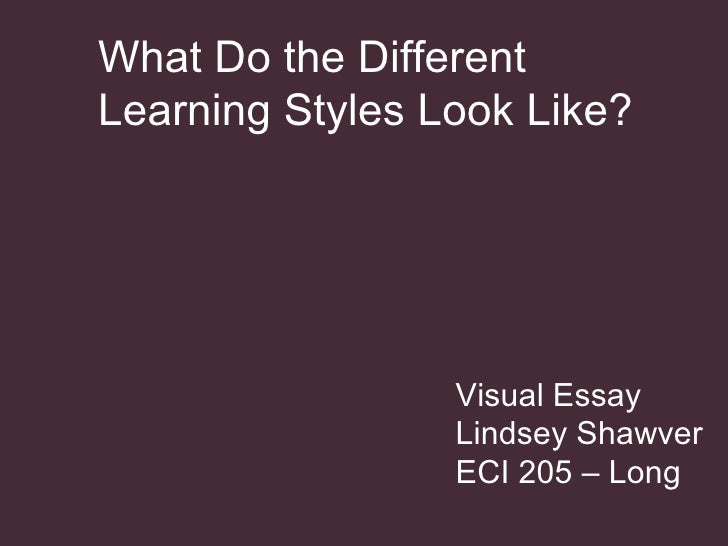 Visual Essay Lindsey Shawver ECI 205 – Long What Do the Different  Learning Styles Look Like?