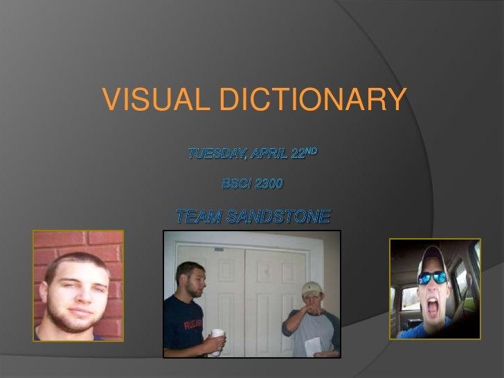 Visual Dictionary-Sandstone