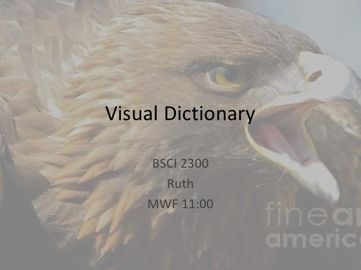 Visual Dictionary<br />BSCI 2300<br />Ruth<br />MWF 11:00<br />