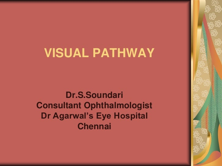 VISUAL PATHWAY      Dr.S.SoundariConsultant Ophthalmologist Dr Agarwal's Eye Hospital         Chennai
