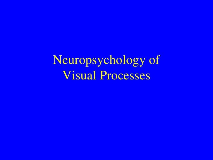 Neuropsychology of Visual Processes