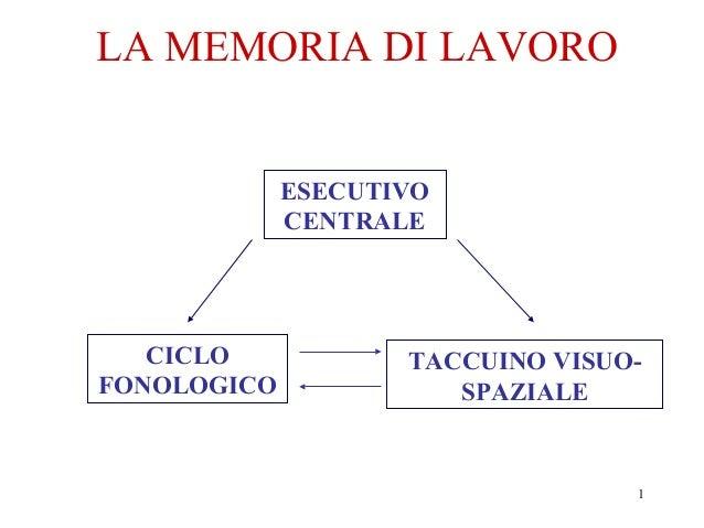 LA MEMORIA DI LAVORO ESECUTIVO CENTRALE  CICLO FONOLOGICO  TACCUINO VISUOSPAZIALE  1