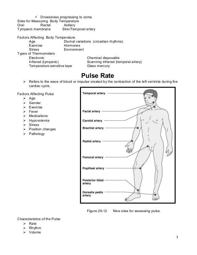 Vital Signs Practice Worksheet - Worksheets