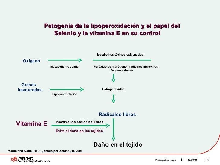 12/20/11 Presentation Name Patogenia de la lipoperoxidación y el papel del  Selenio y la vitamina E en su control  Oxígeno...