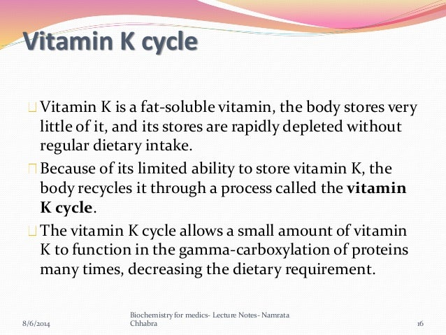 Cycle Vitamin Vitamin k Cycle Vitamin k is a